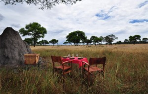 SANCTUARY SWALA CAMP 2